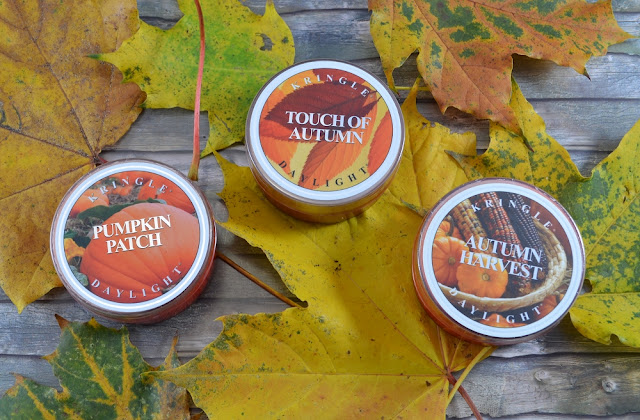Kringle Candles pumpkin patch touch of autumn autumn harvest
