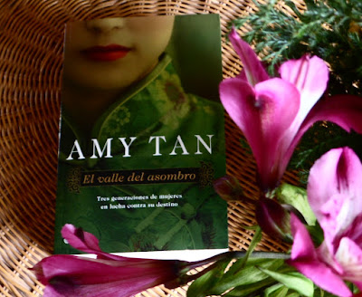 El valle del asombro - Amy Tan