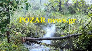 Αποτέλεσμα εικόνας για εικονες καταστροφης στο δημοτικο καταστημα  δασακι αριδαιασ pozar news.gr