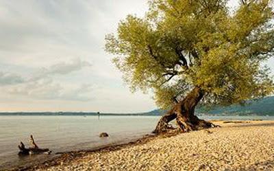 Bình Minh trên hồ Bodensee