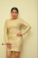 Actress Pooja Roshan Stills in Golden Short Dress at Box Movie Audio Launch  0111.JPG