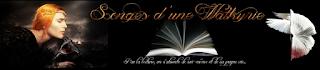 https://songesdunewalkyrie.wordpress.com/2017/06/01/ou-simposent-les-silences-demmanuel-quentin/