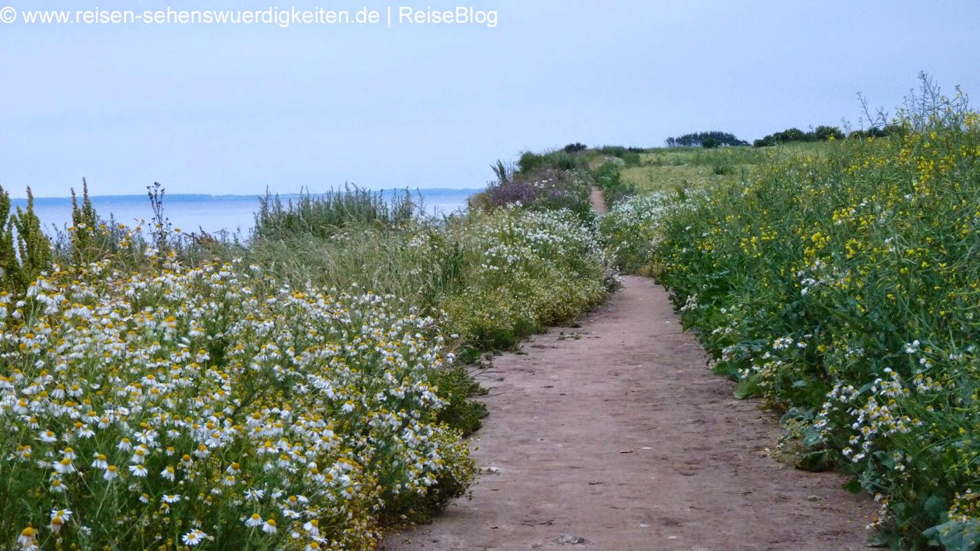 Wanderweg auf der Steilküste