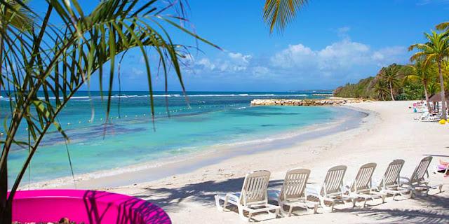 Plage de Sainte Anne en Guadeloupe avec transat sur le sable + cocotiers
