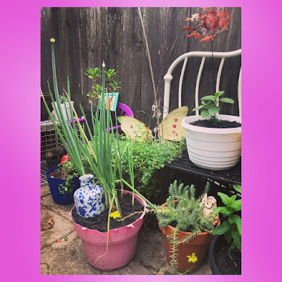 using outdoor plastic children's chairs and old milk crates to build vertical space in an upcycled furniture patio container garden