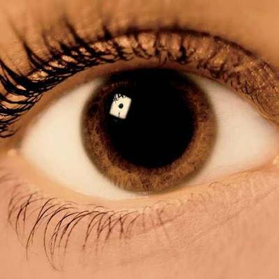 فتح العيون بكامل اتساعها عين عيون بنى بنية جميلة eyes eyes brown open wide beautiful