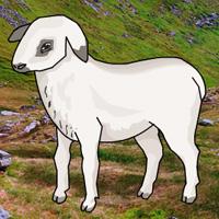 Bigescapegames Big Mountain Lamb Escape