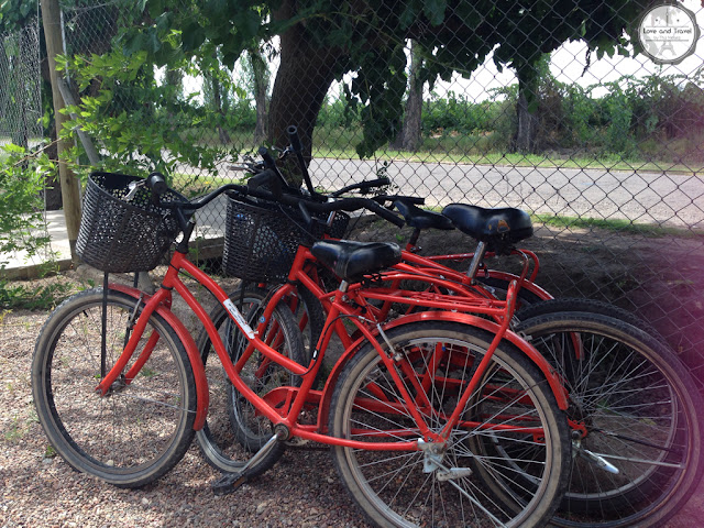 orange bike mendoza maipu