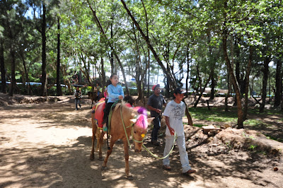 Horse back riding with personal guide at Wright Park, Pacdal, Baguio City
