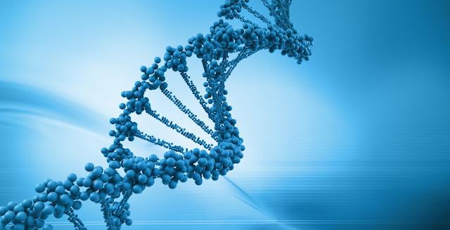 Herencia, genetica y biologia