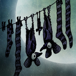 full moon bats, funny bats, bat art,