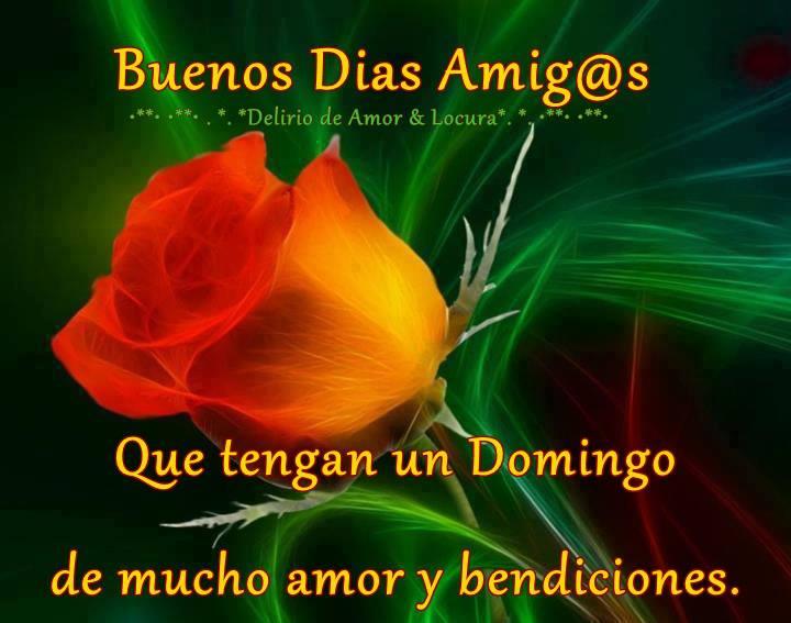 Rosas Con Frases De Feliz Domingo