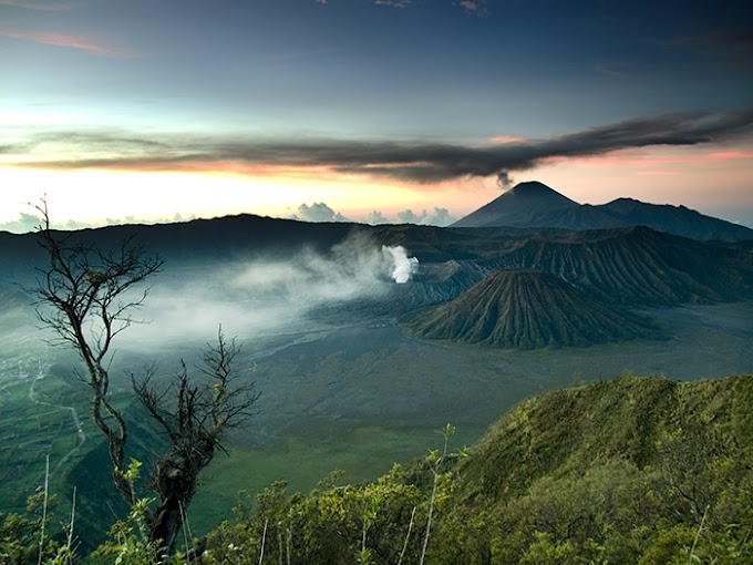 Paket Wisata Malang Dari Yogyakarta dan Sekitarnya