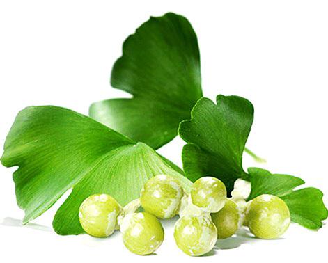 Obat Herbal Penglihatan Berbayang