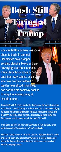 Donald Trump Infographic by David Milberg