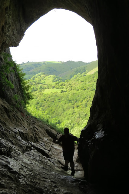 Looking outwards, the dark sides of the cave frame a view of brightly lit trees and hillside.
