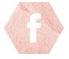 https://www.facebook.com/PetitScarabeeHorrorMovies/?ref=aymt_homepage_panel