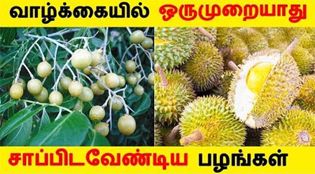 Some Fruits to eat at least once in life!