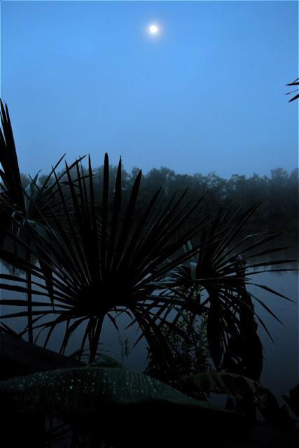 Guyane, Roura, où dormir, rour'attitude