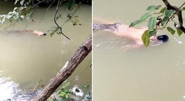 Video: Buaya bawa mayat ke tebing, ditemui orang ramai yang mencari mangsa