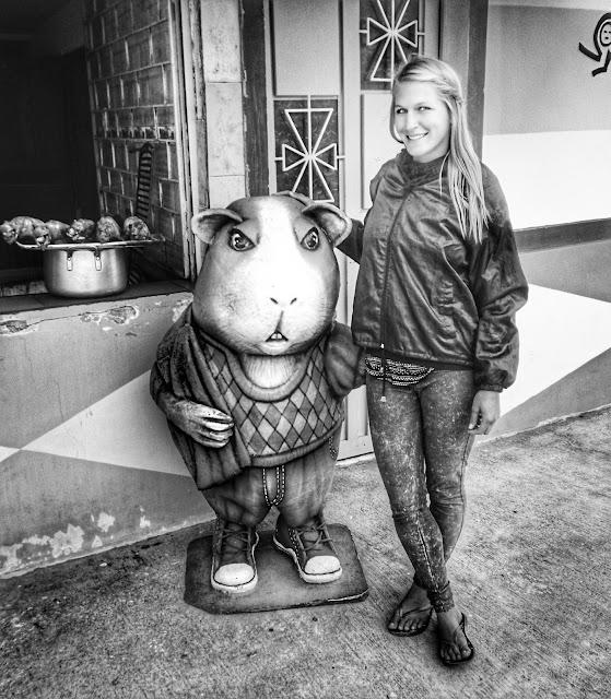 Michi um die Welt, Einmal um die Welt, Weltreise, Backpacking Südamerika, Meerschweinchen essen, Reiseblogger, Einmal um die Welt