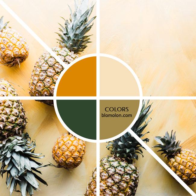 variedad_en_color_moodboard_15