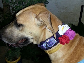 free crochet dog neckwear