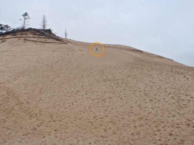 One tall sand dune!