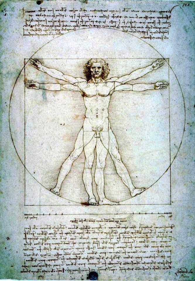 Significato di architettura secondo le interpretazioni di Leonardo da Vinci | L'uomo vitruviano