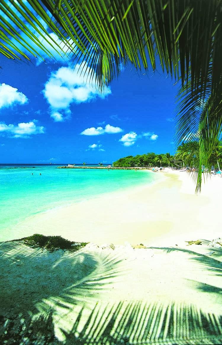 Aruba One Happy Honeymoon