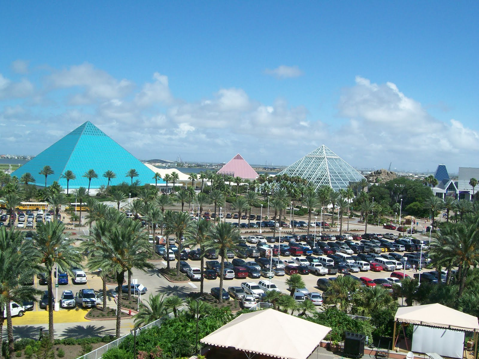 Rockhounding Around: Galveston trip - the Aquarium at ...