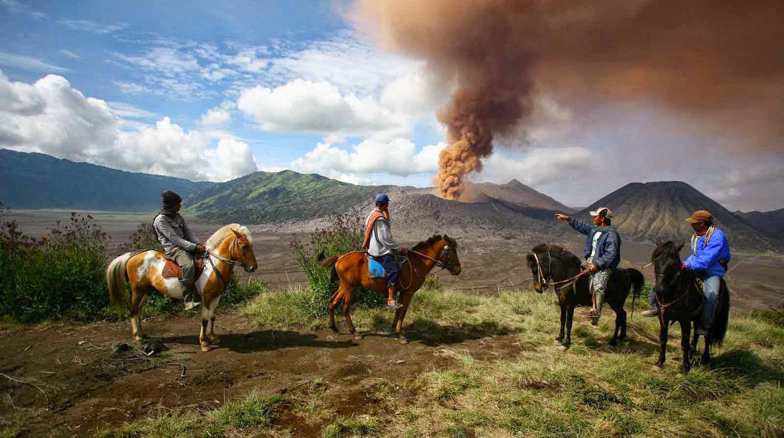 Sewa kuda di bromo