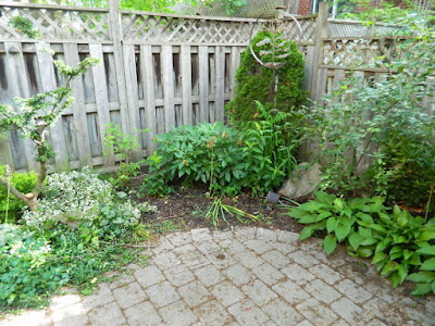 Cabbagetown Toronto shade garden with new perennials before by Paul Jung Gardening Services