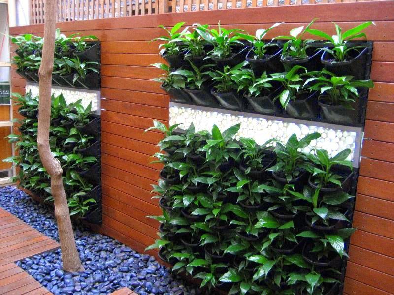 cara merawat tanaman dan aneka tanaman hias mari membuat vertikal garden. Black Bedroom Furniture Sets. Home Design Ideas