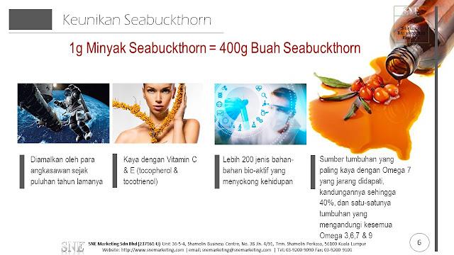 sejarah seabuckthorn