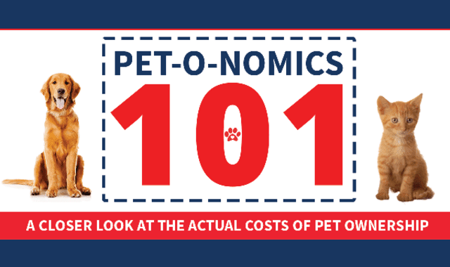 Pet-o-nomics 101: A Closer Look at the Actual Costs of Pet Ownership