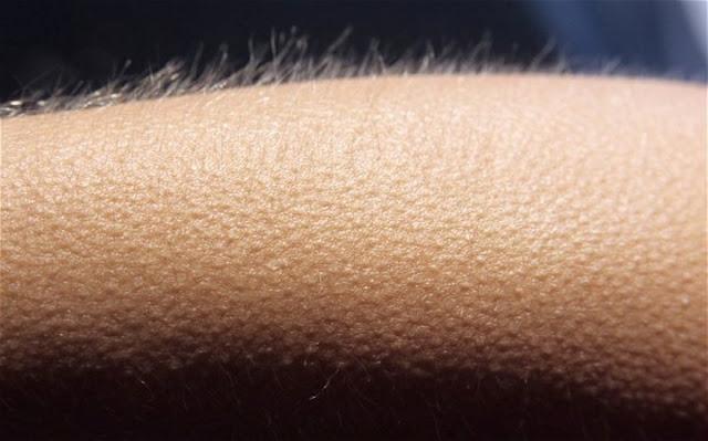 Si la música te pone la piel de gallina, tu cerebro podría ser especial
