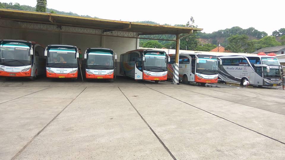 Harga Tiket Bus Rosalia Indah Tahun 2019