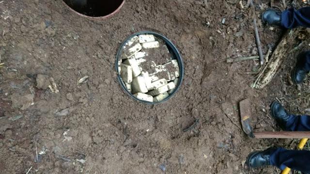 Policiais da Guarda Municipal de  Itararé (SP) apreende mais de 160 kg de maconha enterrados em área florestal