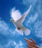 Dove tattoo Design,Peace tattoo design,love tattoo designs