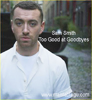Lagu Sam Smith Too Good At Goodbyes Mp3 Cover Version