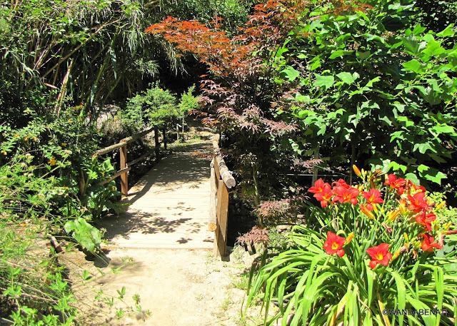 Parco Botanico di Creta