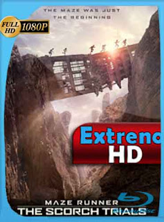 Maze Runner: Prueba de Fuego (2015) HD [1080p] Latino [GoogleDrive] DizonHD