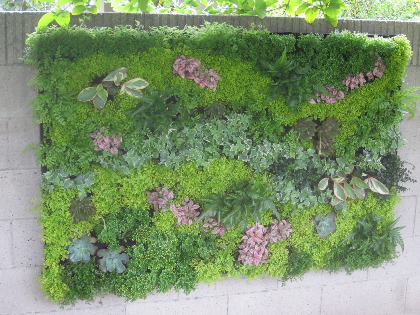 Vertical Garden Utilizing Bright Green Usa System