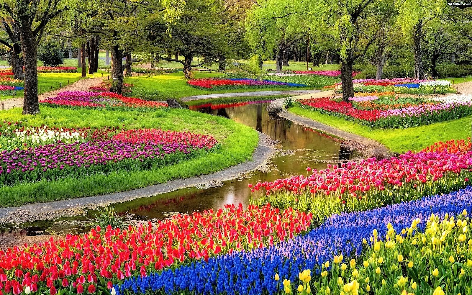 5 Five Keukenhof Gardens Lisse Netherlands