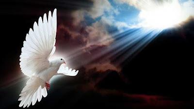 Güvercin Beslemek ve Uçurmak Günah mı Nihat HATİPOĞLU