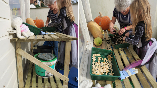 sowing pumpkin seeds trestle staging table