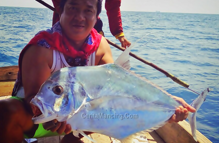Handline Fishing Strike Monster Diamond Trevally