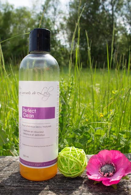 shampoing perfect clean les secrets de loly