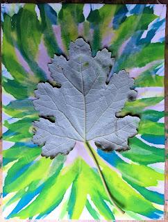 Solarfast prints_Sue Reno_Image 60